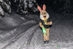 16-Ut4M-BenoitAudige-0593.jpg (Ut4M) Tags: france animations lapin isre ut4m2016reco stylephoto belledonne chamrousse ut4m nuit animaux alpes mascot