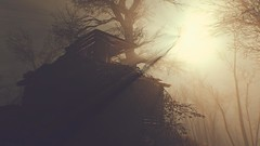 Foggy (Beenja's Gallery) Tags: games fallout reshade enbseries