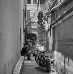 Miami Alley (35mmStreets.com) Tags: blackwhite street city southbeach miami florida collinsave washingtonstreet sobe photography nikon 35mm bw df nik 35mmstreets d600 urban portrait d750 kittens havana d4s sony dsc rx1rm2 lightroom silverefex little