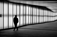 [ Una strada di mille li - A journey of a thousand li ] CSC_0007.2.jinkoll (jinkoll) Tags: street people man passing passingby walk walking blackandwhite bnw bw bn silhouette lights wall night milano milan metro subway perspective vanishing point shadows reflections step