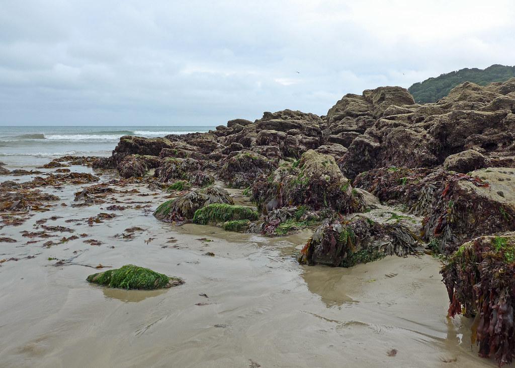 Rocks at Swanpool Beach