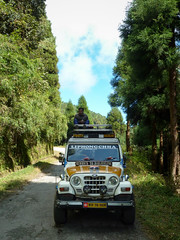Rimbik to Darjeeling (S_Artur_M) Tags: india indien travel reise west bengal himalaya panasonic lumix tz10