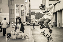 BULLPARK13 7 (xavi_us) Tags: brand marca barcelona bcn skate bullpark bullterrier blackandwhite bnw urban skateboard 13 dog sagradafamilia agbar mapfre macba