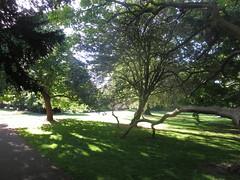 Ruskin Park (John Steedman) Tags: london uk unitedkingdom england   greatbritain grandebretagne grossbritannien       ruskinpark camberwell se5