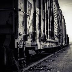 (Blockshadows) Tags: canon 50mm12 50mm hobo railfan colorado denver graffiti train boxcar monocrome white black bw bnw blackandwhite