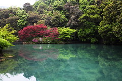 (LouisQiu) Tags:               stream view scenery photography hangzhou china travel jiuxi tea leave