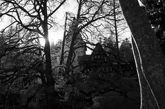 DSC_2020_1 (I am only Claire) Tags: romania bw sinaia