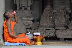Always, Coca Cola (kabezuki) Tags: nikon d5200 asia street monje monk coca cola coke angkor templo temple bebida bebiendo drink drinking tamron tamron70300 cambodia