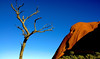 Blast from the Past (Pete Foley) Tags: uluru outback desert australia overtheexcellence littlestories picswithsoul