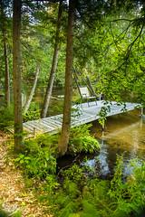 (Sittin' On) The Dock of The Bay . . . (Dr. Farnsworth) Tags: chair dock river relaxing rapidriver dockofthebay otisredding trail wood chips fernridge mi summer september2016
