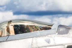 ThunderOverMichigan2016-6022.jpg (CitizenOfSeoul) Tags: 2016 airshow aviation breitlingteam flugplatzfest metrodetroit michigan thunderovermichigan usa warbird willowrunairport wings aircraft f22 raptor