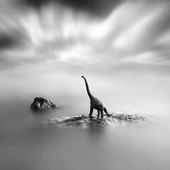 Lost & Found I (Xose Casal) Tags: xosecasal longexposure neutraldensity black blackandwhite blackwhite sea seascape water waterscape square minimal minimalism creative dinosaur jurassic