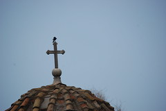 The Church of the Holy Apostles - Cross and Bird (gilmorem76) Tags: greece travel tourism athens agora cross bird church holy apostles religion