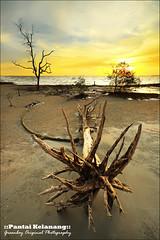 ::A walk to remember:: (Green.Boy) Tags: sunset seascape yellow rock nikon magic uv 09 manfrotto sigma1020mm d90 gnd leefilter d90leefilter