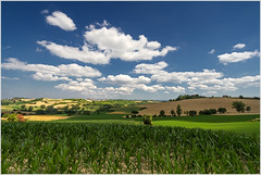 Colline del Monferrato [ Explored ] (beppeverge) Tags: light sky italy panorama color green canon landscape geotagged photography eos photo europe italia photos wheat bluesky natura fav20 hills campagna valley paesaggio cloudysky grano monferrato valli italianlandscape fav10 explored granoturco vallate paesaggioitaliano mygearandme mygearandmepremium mygearandmebronze mygearandmesilver mygearandmegold mygearandmeplatinum mygearandmediamond flickrstruereflection1 flickrstruereflection2