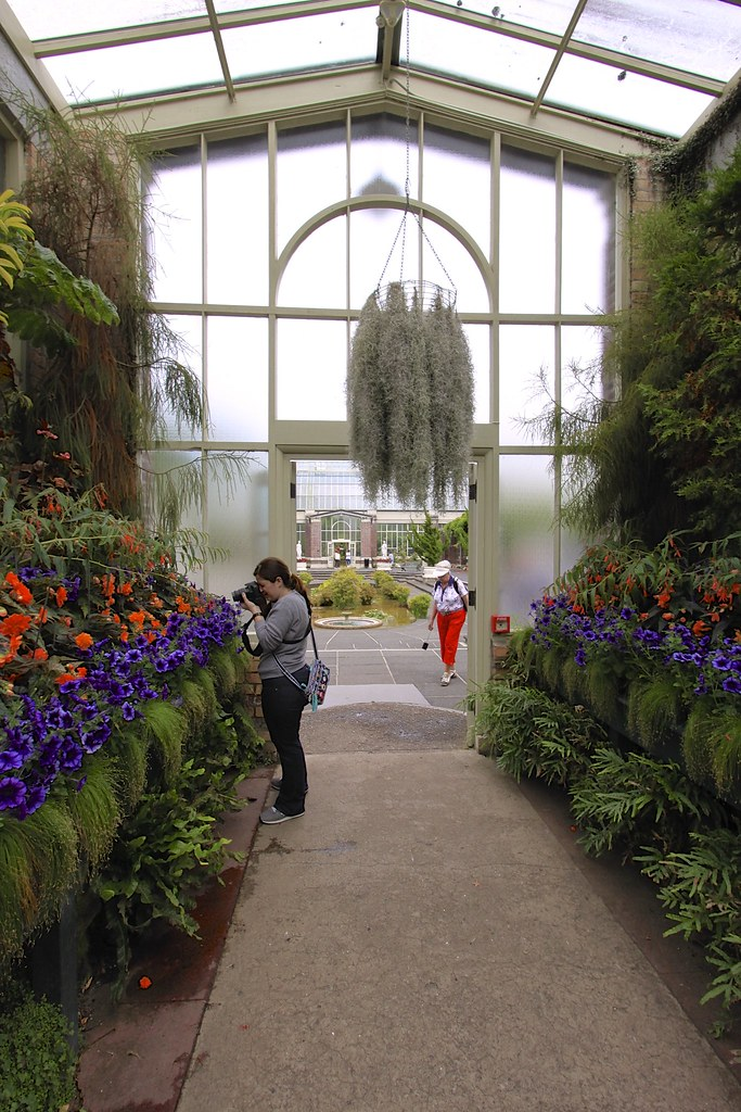 The World's Best Photos of auckland and greenhouse - Flickr