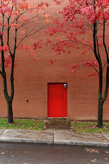 Red all over (algbailey) Tags: street door autumn trees red house ontario canada building brick fall colors grass leaves station automne fire nikon couleurs ottawa side somerset nikkor littleitaly coulours afs2870mmf28d tonybailey antoinebailey algbailey