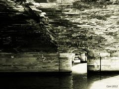 Under the bridge (cani7575) Tags: bridge paris pont ep2 14mmf25
