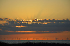 SUNRISE OVER BOTANY BAY   (101) (DESPITE STRAIGHT LINES) Tags: uk morning sea england sky cliff cloud sunlight seaweed beach wet water rock clouds sunrise dawn bay coast chalk kent seaside am sand nikon rocks waves power sandy tide shoreline wave cliffs coastal shore coastline botanybay tidal windfarm goldenhour turbines firstlight broadstairs thegoldenhour offshorewindfarm d700 botanybaykent nikond700 nikon18105mmvr nikongp1 botanybaybroadstairs sunriseoverbotanybay botanybayuk