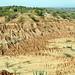 Desierto de la Tatacoa (4)