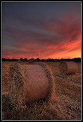 Bale Out (greyridge) Tags: sunset field hay haybales seatonsluice
