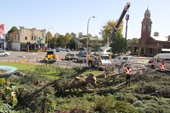Maitland City Library, N.S.W. (maitland.city library) Tags: maitland newsouthwales city library garden tree storm damage removal 480 high street crane court house courthouse