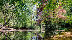 park (photogo.pl) Tags: park landscape water tree yellow green lake bridge house forest mirror nature