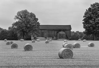 Hay bales and Barn