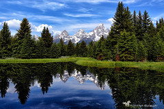 BEAUTY ... and the beast (Aspenbreeze) Tags: grandtetonnationalpark schbacherslanding tetons tetonmountainrange water reflection trees nature rural nationalpark outdoors naturalworld wyoming beverlyzuerlein aspenbreeze moonandbackphotography npc
