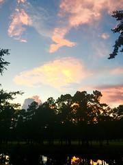 (scmrsgena) Tags: mrsgena south southern southcarolina pawleysisland lowcountry golfcourse water trees reflection pinkclouds sunset sky backyard