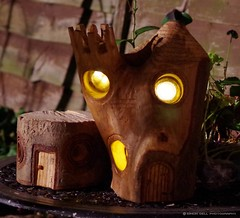 wood carved fairy house (Simon Dell Photography) Tags: wood carved fairy house castle hand made design awsome lights stick bucket simon dell art sheffield hackenthorpe