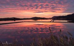 (MCarballo) Tags: 2013 fotoexcursionesalicante murcia calblanque mar matinal mediterraneo nocturna otoño playa