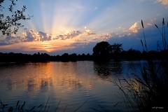 Rayons du soir (jpto_55) Tags: soleilcouchant coucherdesoleil nuage lac etang lacsoula xe1 fuji fujifilm fujixf1855mmf284r plaisancedutouch hautegaronne france