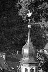 Monschau Burg - 2016 - 022_Web (berni.radke) Tags: monschau eifel rur montjoie nordrheinwestfalen rureifel burg schloss castruminmunjoje hhenburg