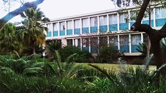 MATHS BUILDING  #MATHS  Hatfield campus university of pretoria (emmanuelnyabadza) Tags: maths outdoor architecture building old green blue leaves greengrass wiskunde palmtrees