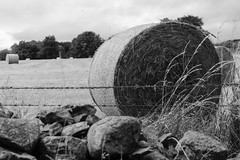 HTT (Wendy:) Tags: fence wire hay haybale texture htt vartryreservoir roundwood wicklow water