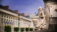 Bruxelles (Yasmine Hens) Tags: brussel bruxelles ville hensyasmine namur belgium wallonie europa aaa belgi belgia europe belgien  belgique blgica   belgie  belgio    bel be panasonicdmcgx8 lumixgvario14140f3556 statue