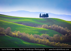 Italy - Tuscany - Val d'Orcia - UNESCO World Heritage Site - Typical view of the rolling hills with cypress trees (© Lucie Debelkova / www.luciedebelkova.com) Tags: valdorcia tuscany toscana italy italia italian italie europe eu it world exploration trip vacation holiday place destination location journey tour touring tourism tourist travel traveling visit visiting sight sightseeing light lights dawn dusk wonderful fantastic awesome stunning beautiful breathtaking incredible wwwluciedebelkovacom luciedebelkova luciedebelkovaphotography nature landscape green hill field tree