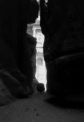 Go to the treasure (Nichelino) Tags: frozenintime petra jordan treasure