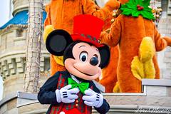Celebrate The Season (disneylori) Tags: mickeymouse celebratetheseason disneycharacters nonfacecharacters characters christmas magickingdom waltdisneyworld disneyworld wdw disney