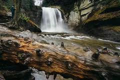 Looking Glass Falls in Pisgah National Forest (bradleysiefert) Tags: appalachianmountains ashevillearea formatthitechfilters lookingglassfalls northcarolina pisgahnationalforest forest longexposure rainy stateforest waterfall wet