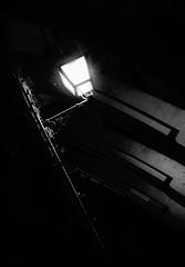 Nightlight (Cromo Lab) Tags: light shadow bw plants white black blanco luz metal noir bricks negro sombra bn lamppost farol blanc