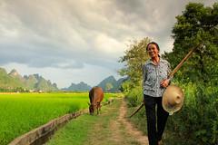 Rural Life Guangxi (craigkass) Tags: china mountains guilin yangshuo farming karst guangxi rurallife