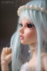 Chantyl (Shory ) Tags: girl doll ns parts makeup chloe homemade bjd resin mermaid mnf shory