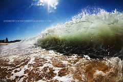 Terrigal Shorebreak (Andrew Cooney Photography) Tags: new beach water wales photography coast nikon day waves south central australian wave australia andrew fisheye shore nsw beaches housing daytime spl terrigal shorebreak 105mm cooney nikon105mm terrigalbeach waterhousing nikond800 shorie splwaterhousing waterhosuing andrewcooneyphoography andrewcooneyphotographycom