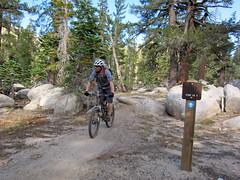 Armstrong Pass (TAMBA Tahoe) Tags: california mountain lake mountains bike rose fun track ride nevada group trails tahoe toads sierra september trail single biking area recreation rider epic association 2012 tamba