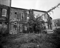 One-A-Day X-Ray, 9/12/12, Abandoned Apartments (mat4226) Tags: 400 400asa 8x10 8x10film oa obsidianaqua artar bw blackandwhite compensatingdeveloper contrasty eastmancommercialb film filmisnotdead filmphotography findlay findlayohio greenlatitude highspeed highlydilute kodak kodakfilm largeformat matmarrash midwest minusblue n1 natural nature northwest nw nwoh oadxray obsidian oh oneadayxray ortho orthochromatic pyro pyrocat reddotartar semistand sharp stainingdeveloper stand standard tree xray yellowfilter zonesystem 121mm 121 superwide wideangle apartment abandoned downtown schneider superangulon urban urbandecay decline ivy weeds