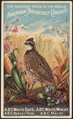 The choicest foods in the world. American Breakfast Cereals [front] (Boston Public Library) Tags: birds corn wheat cerealproducts advertisingcards