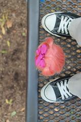 it's a big jump Winnie!  Don't look down!