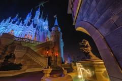 Castle and Fountain (Allen Castillo) Tags: waltdisneyworld disney wdw magickingdom cinderellacastle cinderellafountain nightphotography ultrawide nikond610 nikon1424 orlando florida themepark